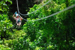 Aerial Trek - Barbados - Tree Top Adventure